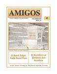 Revista digital AMIGOS - Vol 17, número 5