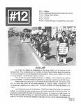 Revista digital AMIGOS - Vol 1, número 12