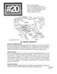Revista digital AMIGOS - Vol 1, número 20