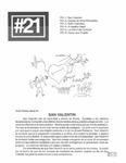 Revista digital AMIGOS - Vol 1, número 21