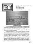 Revista digital AMIGOS - Vol 1, número 36