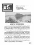 Revista digital AMIGOS - Vol 2, número 5