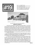 Revista digital AMIGOS - Vol 2, número 19