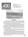Revista digital AMIGOS - Vol 2, número 20