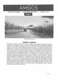 Revista digital AMIGOS - Vol 3, número 11