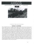 Revista digital AMIGOS - Vol 3, número 19