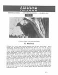 Revista digital AMIGOS - Vol 3, número 27