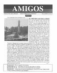 Revista digital AMIGOS - Vol 4, número 13