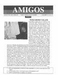 Revista digital AMIGOS - Vol 4, número 16