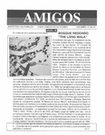 Revista digital AMIGOS - Vol 4, número 21