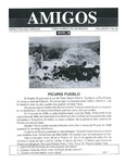 Revista digital AMIGOS - Vol 5, número 28