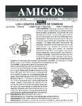Revista digital AMIGOS - Vol 6, número 13