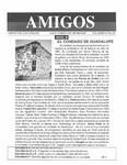 Revista digital AMIGOS - Vol 6, número 30