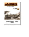 Revista digital AMIGOS - Vol 13, número 1