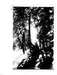 New Mexico Daily Lobo, Volume 088, No 74, 12/7/1983