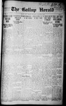 Gallup Herald, 12-06-1916
