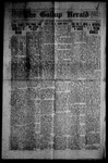 Gallup Herald, 03-29-1919