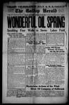 Gallup Herald, 06-28-1919