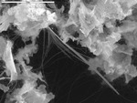Filaments and threads bridging manganese oxide mineral