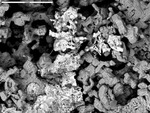 BSE overview of corroded crystals by M. Spilde and P. Boston