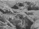 Filament in copper debris using backscatter