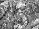 Clays on calcite by M. Spilde, D. Northup, and L. Melim