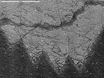 Closer of crystals with crust by M. Spilde, L. Melim, and D. Northup