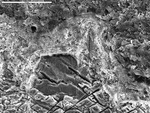 Closer view of crystal ends and coating by M. Spilde, L. Melim, and D. Northup