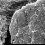 Detail of round body in crystal by George Braybrook, Leslie Melim, and Brian Jones