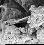 Edge of hydromagnestite by George Braybrook, Leslie Melim, and Brian Jones