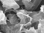 Detail on resistant feature sticking out of carbonate by D. Northup and L. Melim