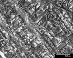 Detail of lamina disappearing into fine mesh of crystals. by M. Spilde, L. Melim, and D. Northup