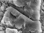Detail on bridging between etched crystals by M. Spilde, D. Northup, and L. Melim