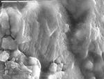 Detail on film below spheroid from L13-12 by M. Spilde