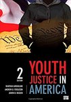Youth Justice in America by Maryam Ahranjani, Andrew G. Ferguson, and Jamin B. Raskin