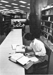 Long view of students studying on upper floor of the library. by University of New Mexico School of Law