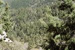 Butterfly Peak (3).JPG by USDA Forest Service