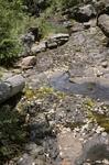 Little Water Canyon (35).JPG
