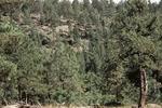 Little Water Canyon (31).JPG