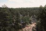 Wildcat Canyon   (1).tif