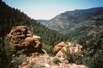Upper Fork Parker Creek   (5).tif