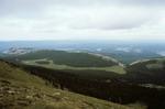 McCrystal Meadows   (1).tif