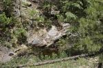 Zuni Mountains (12).JPG
