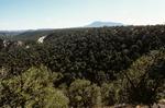 Largo Mesa   (6).tif