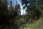 Haynes Canyon   (3).tif