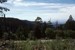 Haynes Canyon   (1).tif