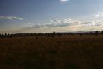 Garland Prairie  (3).tif