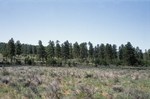Zuni Mountains (3).JPG