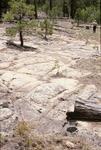 Zuni Mountains (16).JPG