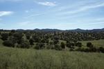 Canelo Hills   (5).jpg